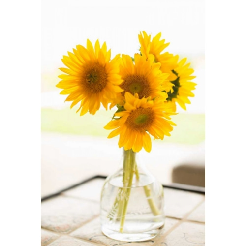 Sunflowers in Small Vase 꽃 사진 포스터