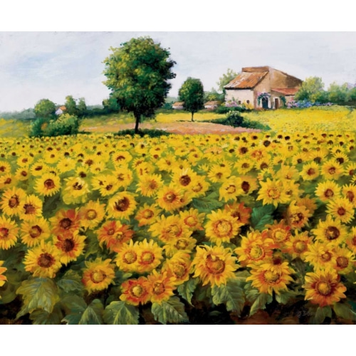 Field with sunflowers 꽃 그림 포스터