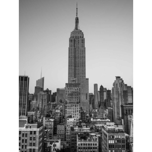 Frank, Assaf의 Empire State Building with New York City Manhattan skyline with skyscrapers