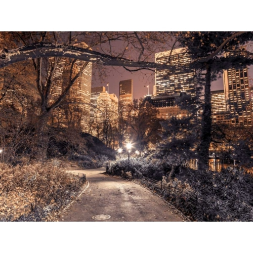 Frank, Assaf의 Evening view of Central Park in New York City