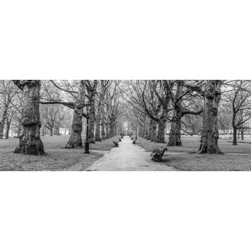 Frank, Assaf의 Avenue of trees, Green Park, London, FTBR-1839