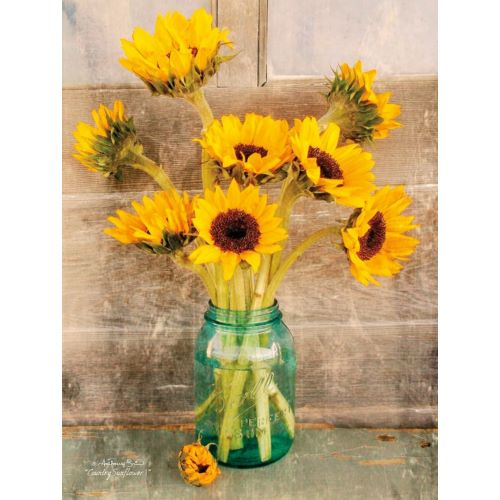 Smith, Anthony의 Country Sunflowers I